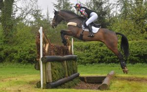 Helen-Bell-Equestrian-horse-sales-success-5